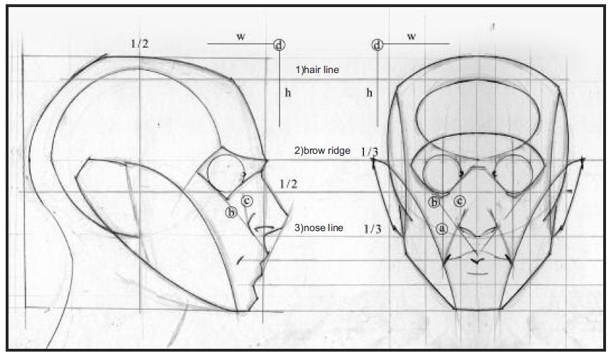 desenhistas autodidatas os fundamentos do desenho da figura humana