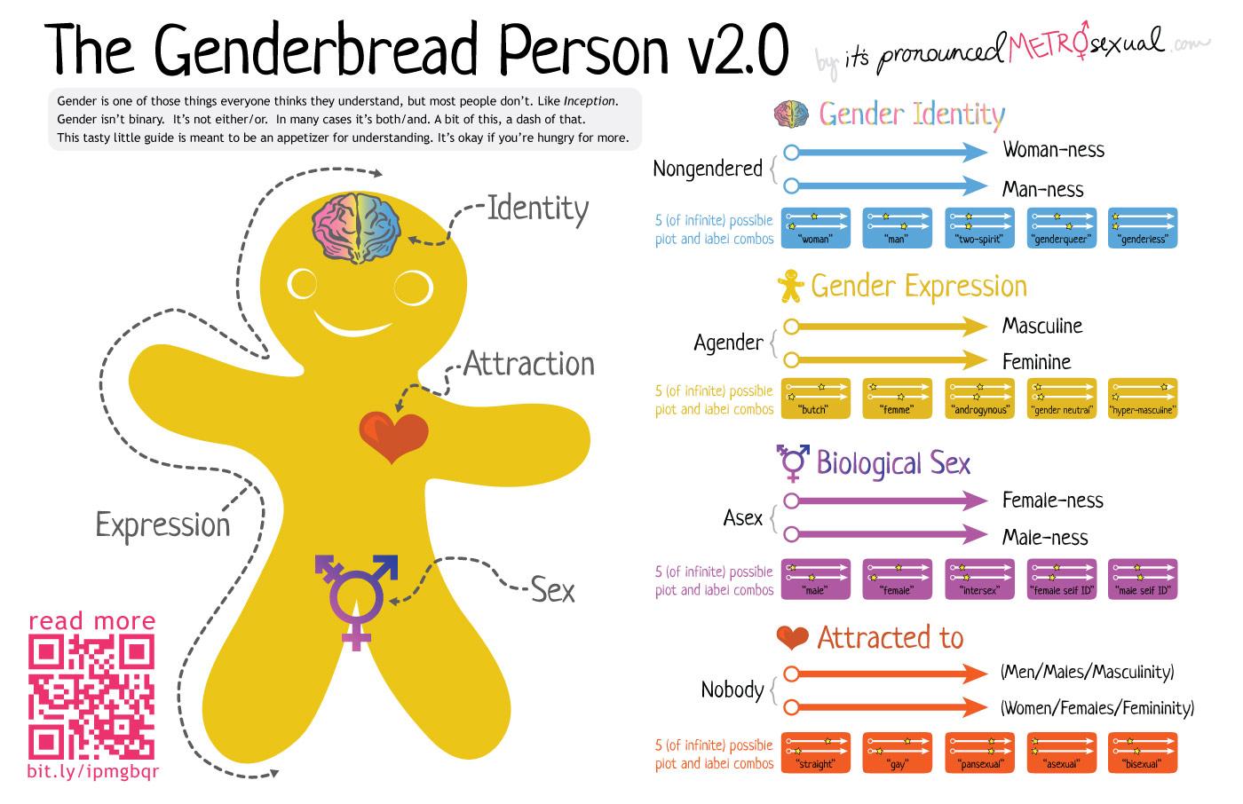 The Feminist Agenda: The Genderbread Person