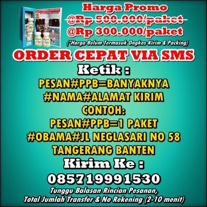order-cepat-via-sms-ppb-super