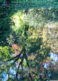 http://www.redbubble.com/people/colinkemp/works/9569096-monet-at-stourhead