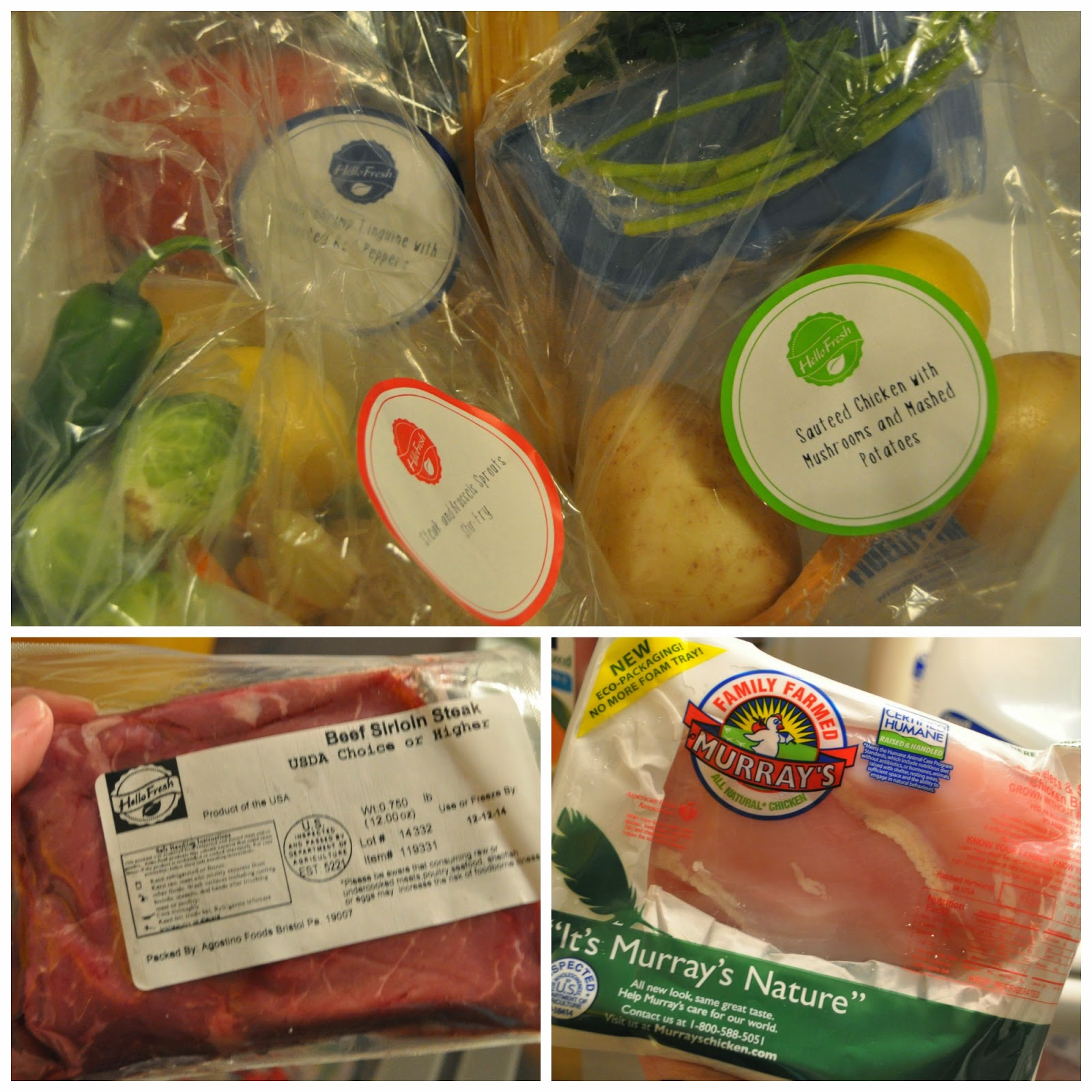 Review hellofresh meal delivery the food hussy the proteins are on one side and the veggiesspices are all bagged and packaged by recipe on the other side it was fun unpacking and seeing forumfinder Gallery