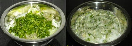 lauki, kheera cilantro mixed to make raita