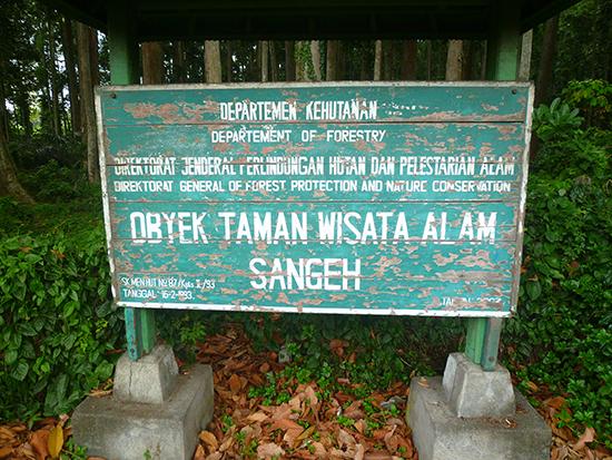 Sengeh, naturaleza de Bali