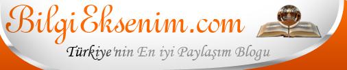 bilgieksenim logo