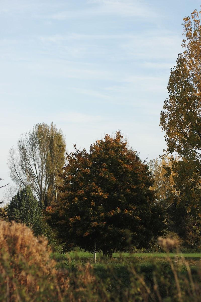 admirals park chelmsford