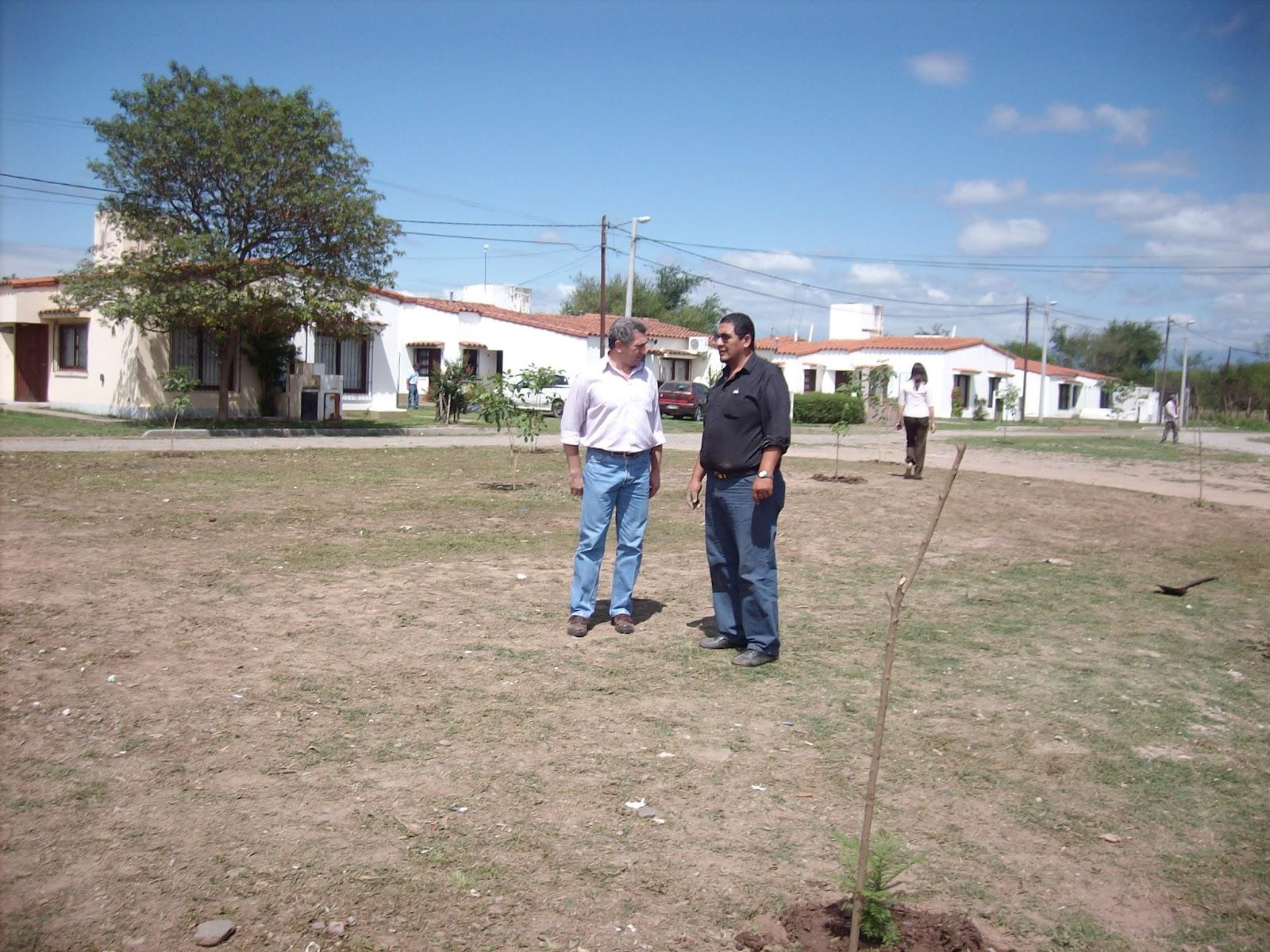 Direccion de la produccion y medio ambiente municipalidad for Viveros zona sur