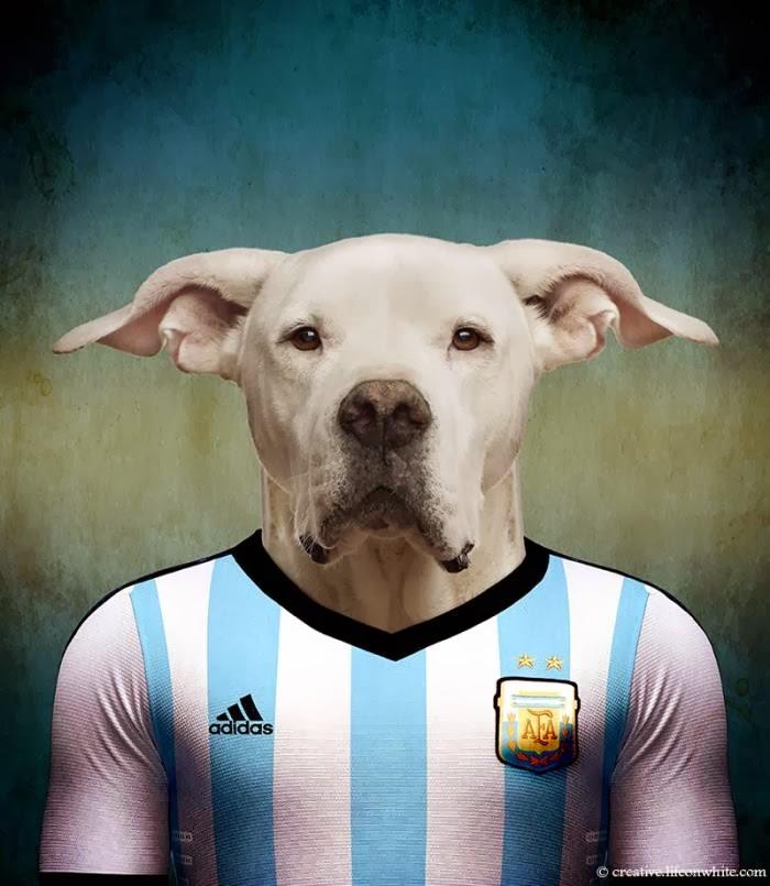 Argentina – Dogo Argentino