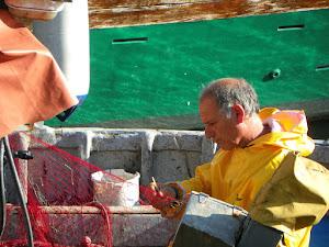 Pescatori a La Maddalena (foto ap)