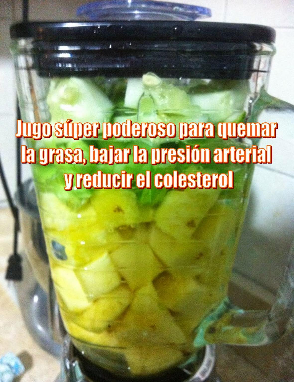 C mo preparar un batido de pi a y semillas de ch a para for Infusiones para bajar el colesterol