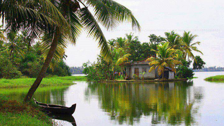 Kerala , Incredible India   Photo :: Noushad Mohammed