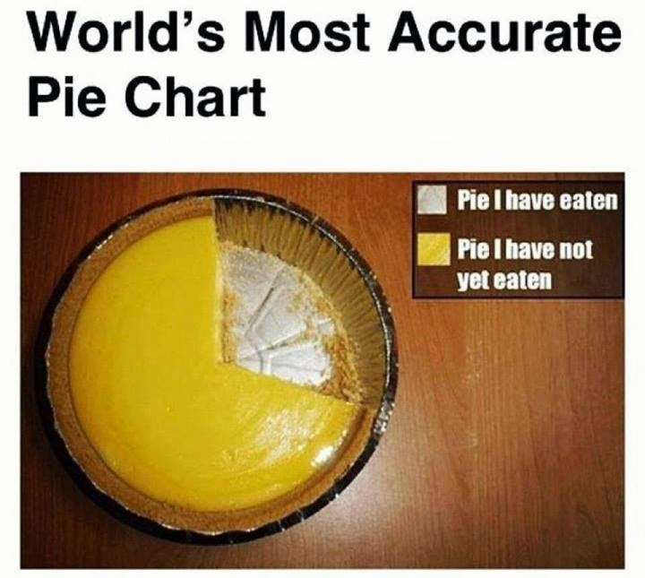 Worlds Most Accurate Pie Chart Most Unbelievable Amazing Things