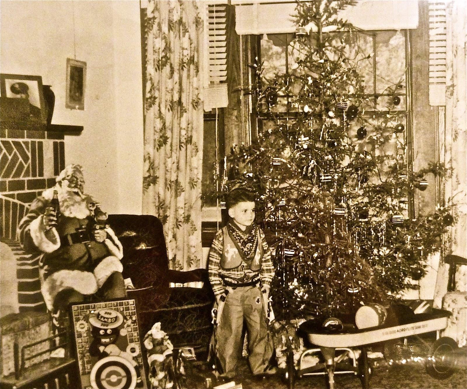 Christmas Trees In Ri