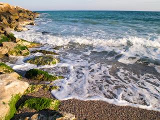 Mangalia, Marea Neagra