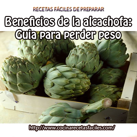 alcachofa,agua