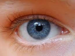 Tips Mudah Untuk Memanjangkan Bulu Mata