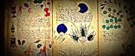 Manuscrito Voynich con ilustraciones