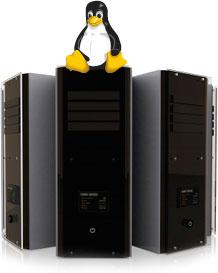 Capa do Curso Servidores Linux Grátiscursos