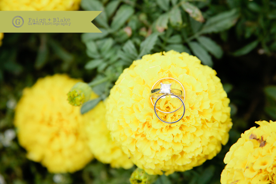 Yellow flower, wedding rings by Paige and Blake Green Photography