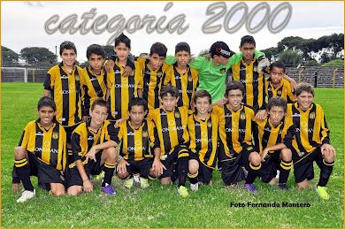 CATEGORIA 2000