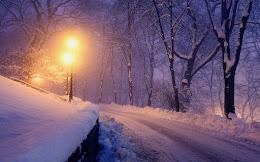 Январь, за окнами зима. Снег серебриться белый-белый…