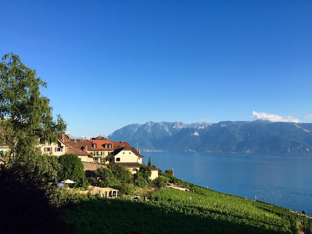 Lavaux Vineyard Terraces Switzerland