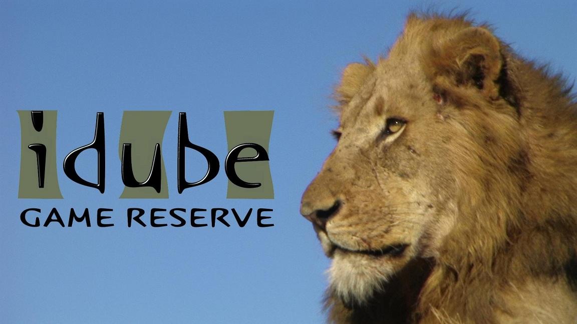 Idube Game Reserve