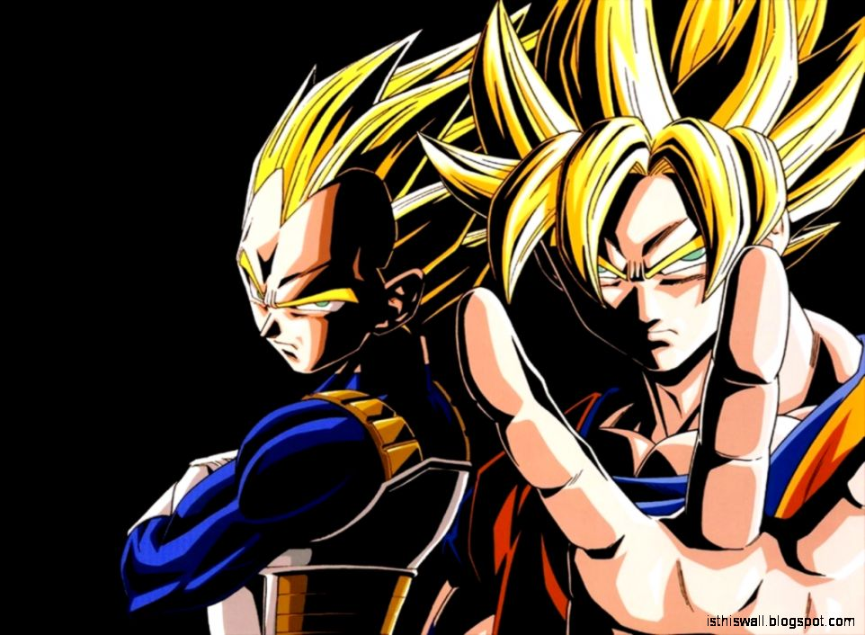 Dragon Ball Z Goku vs Vegeta