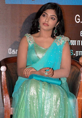 Actress Rima Kallingal Hot Saree Blouse Photos
