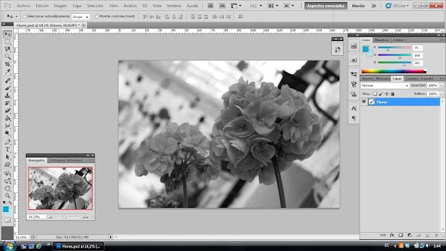 tutorial photoshop paso 3