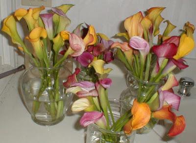 Calla Farmers Market Flowers