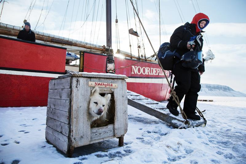 dog house outside of ship frozen in the ice in northern norway