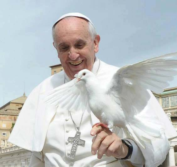 Intenciones del Papa