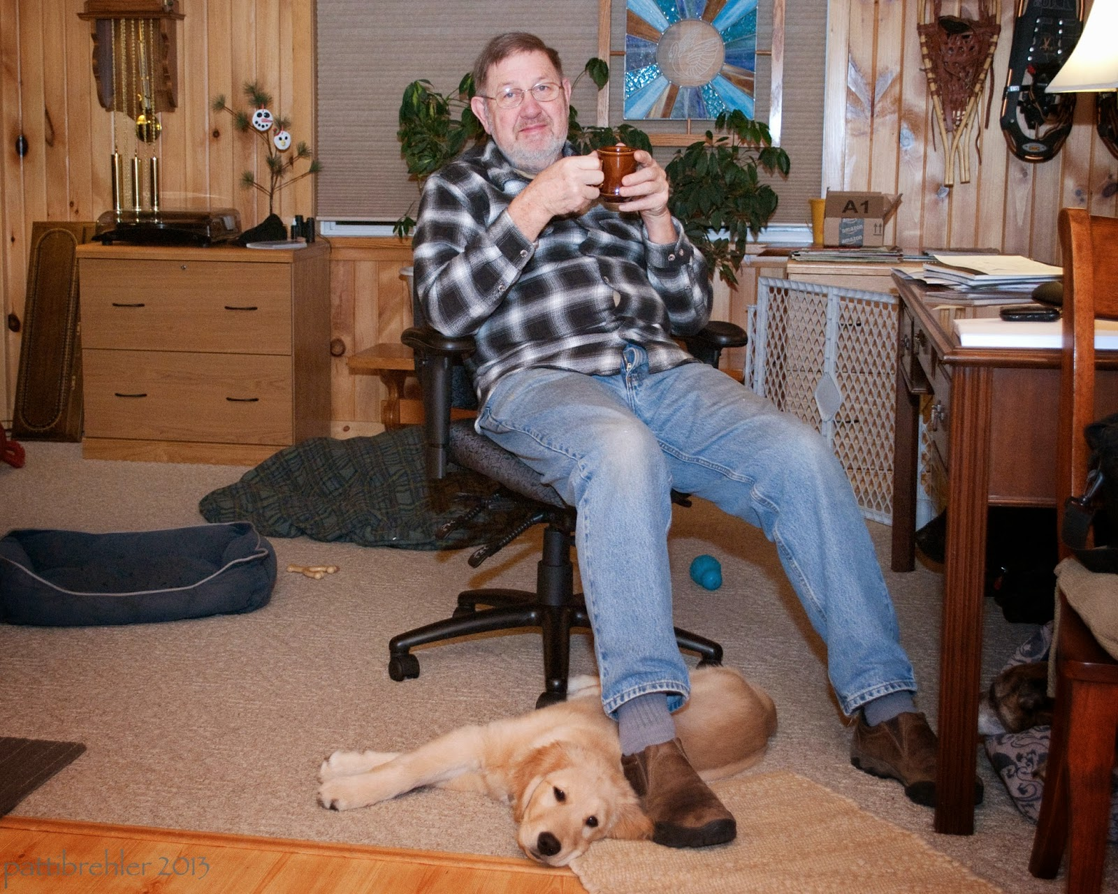 A man wearing glasses and holding a brown coffee mug, wearing a black and white checked shirt and blue jeans is sitting in a black office chair. A desk is just off to the right. A golden retriever is lying on the floor under his legs, looking at the camera, the dog is on his side. The room is paneled in tongue and groove pine, there is a light brown file cabient in the background on the left and two blue dog beds on the floor on the left.