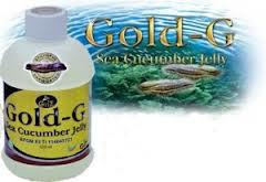 Gold-G Sea Cucumber