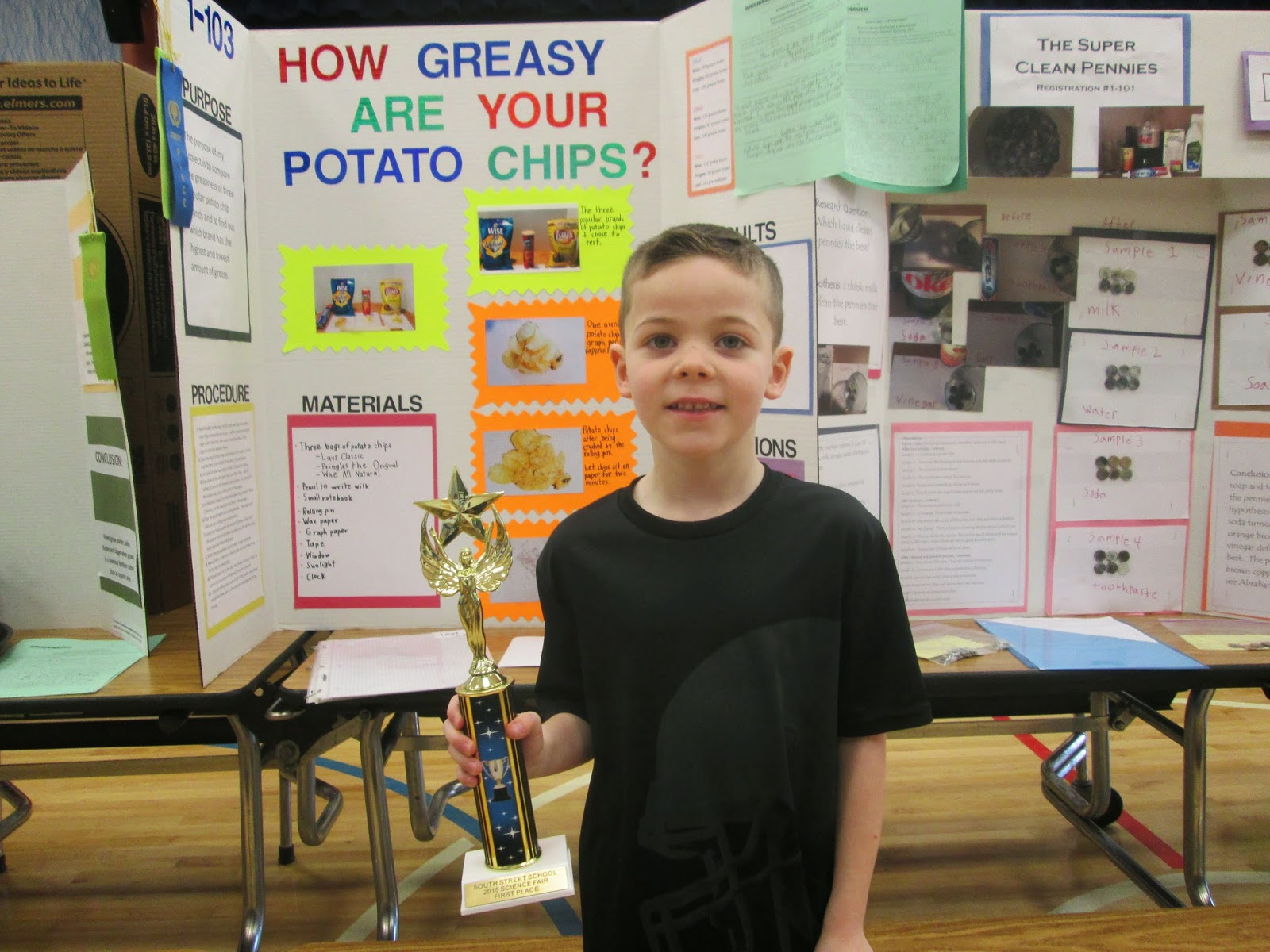how greasy are your potato chips hypothesis