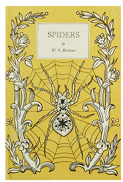 Vintage King Penguin Spiders Book from Stella & Rose's Books