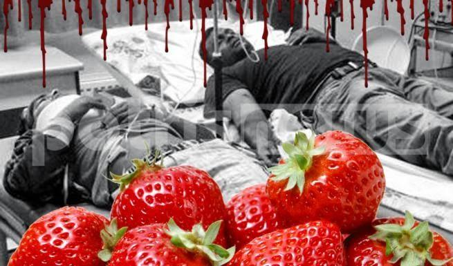 Μανωλάδα:«Ο ξένος εργάτης μπορεί να πεθάνει σαν το σκυλί στ' αμπέλι με δικαστική απόφαση»