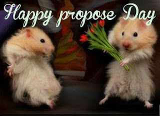 propose day images with quotes