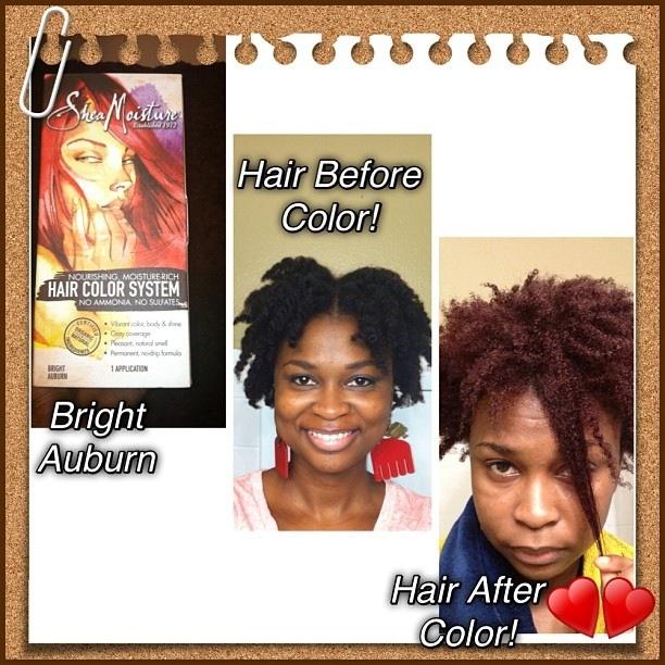 Glam Natural Life Natural Hair Blog Shea Moisture Ammonia Free