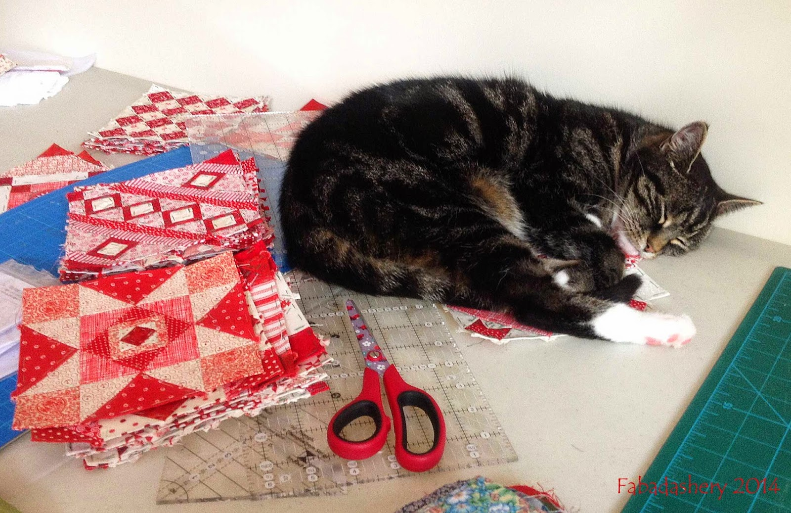 Nearly Insane Quilt Blocks cat sleeping