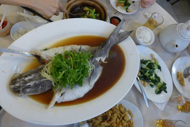 big nose fish