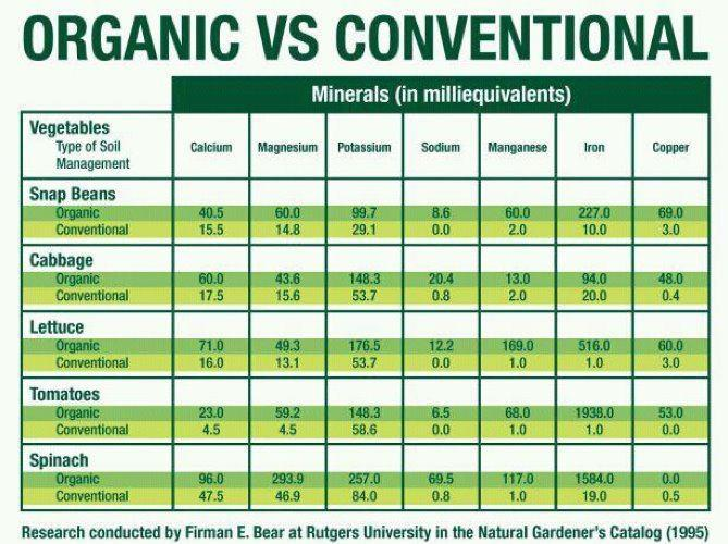 Organic vs. Conventional Produce: How Should You Choose