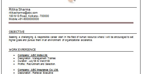 over 10000 cv and resume samples with free download mba hr resume