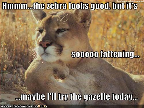 http://3.bp.blogspot.com/-Ml9PNTiseTE/TahyJVnDIwI/AAAAAAAAA0E/3ZX8XP5pgTU/s1600/funny-pictures-lion-talks-diet.jpg