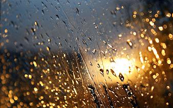 #28 Rain Wallpaper