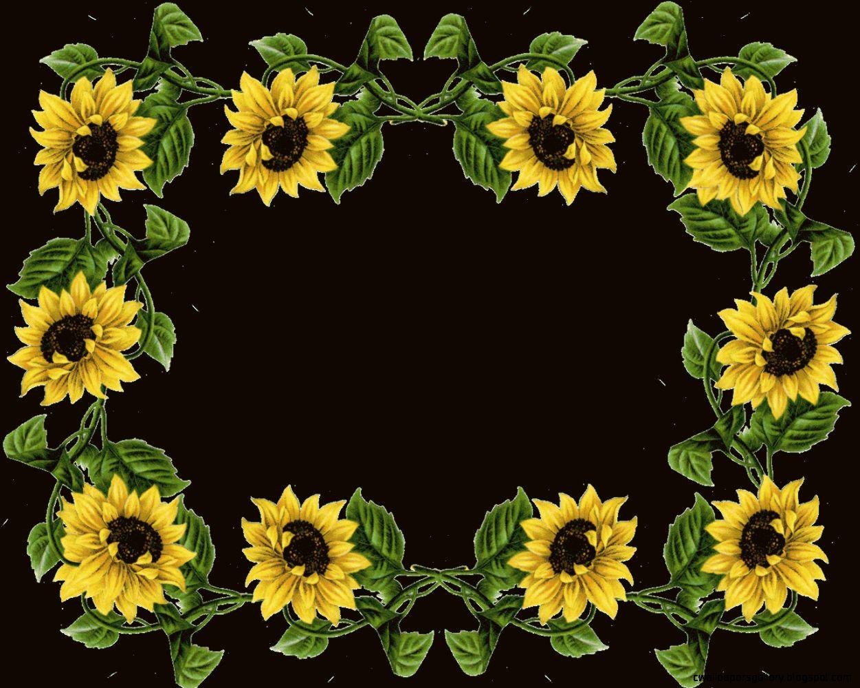 Sunflower Border Clipart  Clipart Panda   Free Clipart Images