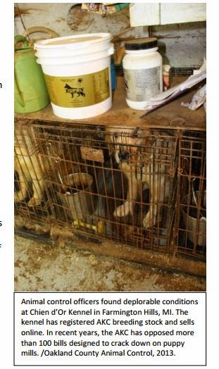 101 Puppy Mills A Sampling of Problem Puppy Mills in the United States
