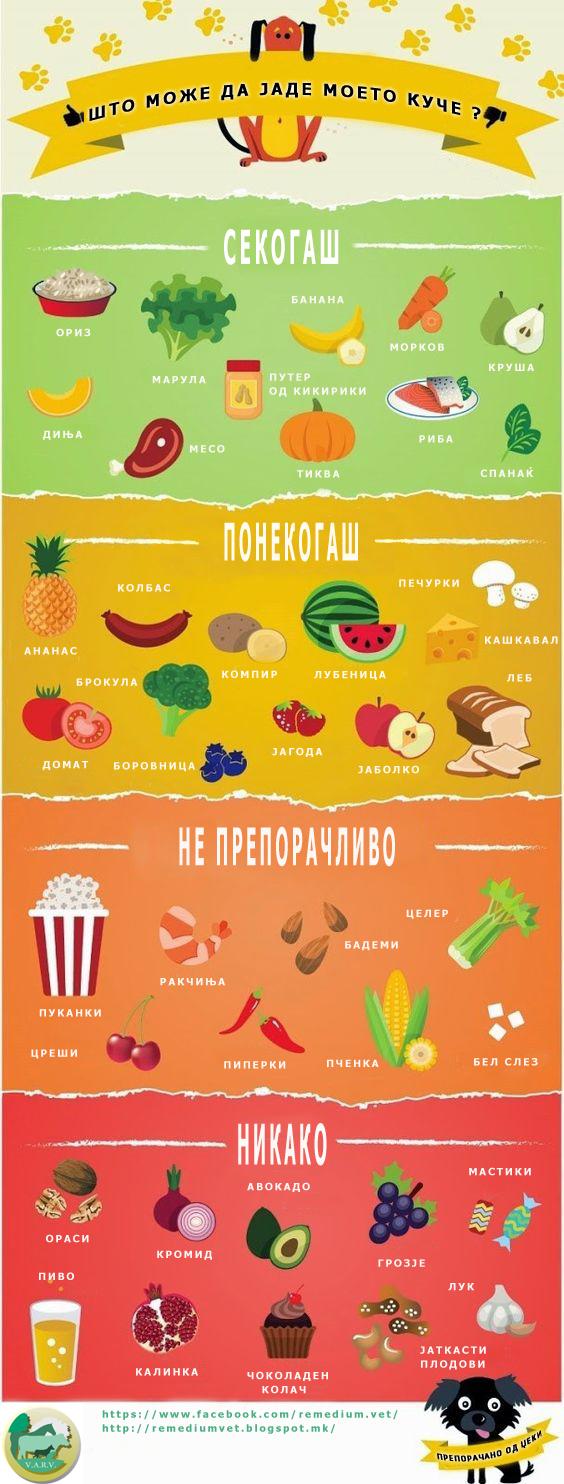 Што може да јаде моето куче? - препорачано од Џеки, постер презентација.