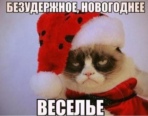 Порция новогоднего юмора