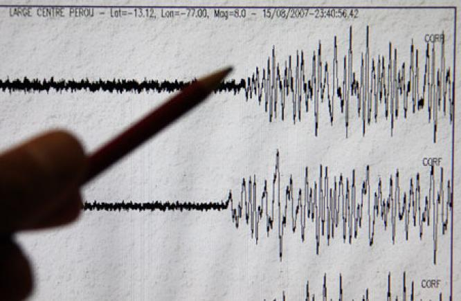 Gempa Bumi 4,8 SR Guncang Jayapura Papua